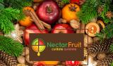 La Navidad ha llegado a Nectarfruit