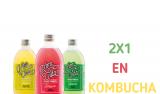 ¿Conoces la Kombucha?
