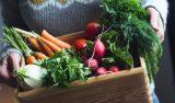 Consumir fruta y verdura de temporada favorece al estómago y al bolsillo